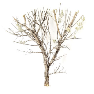 ho scale model tree armatures