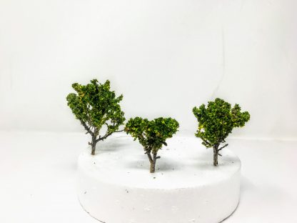Scale Model Trees