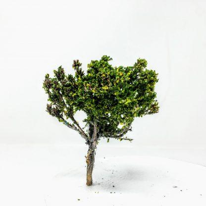 4 inch miniature model tree
