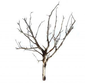 HO scale model tree armature