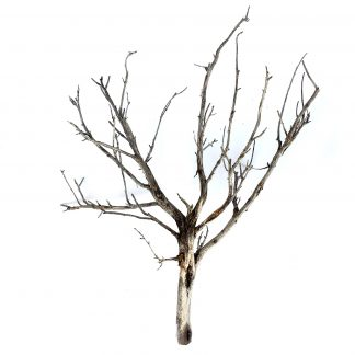 HO scale model tree armature