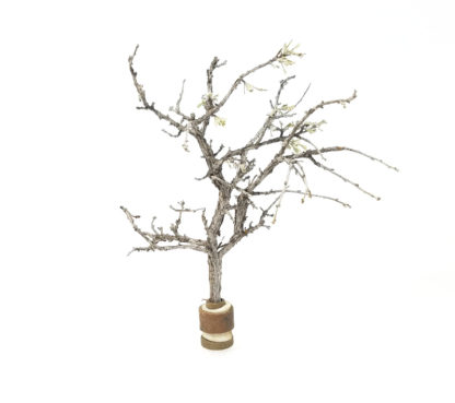 4-5 inch model tree sagebrush armature